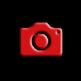Rear Camera Repair